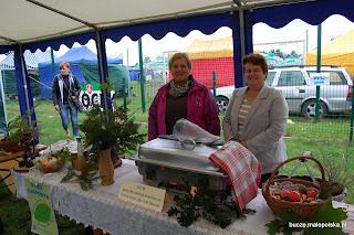 Święto Grzyba 2014, konkurs kulinarny