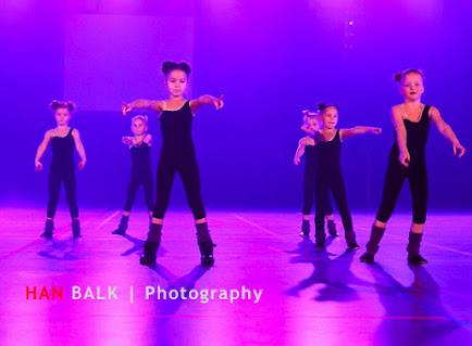 Han Balk Voorster Dansdag 2016-3341-2.jpg