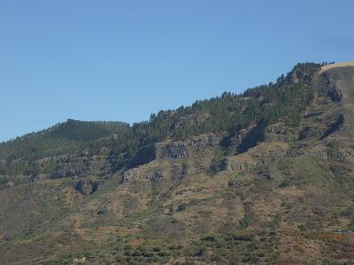 Pinien und eine Straße im Bergland von Gran Canaria.