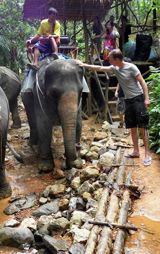 https://lh3.googleusercontent.com/-16tjh2rbDbs/Upz3De6GaTI/AAAAAAAADyo/f6TFwKaqtQ0/w320-h508-no/Tajlandia+2013+348.JPG