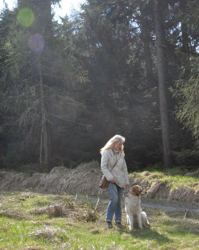 2014-04-13 - Waldführung am kleinen Waldstein (von Uwe Look) - DSC_0462.JPG