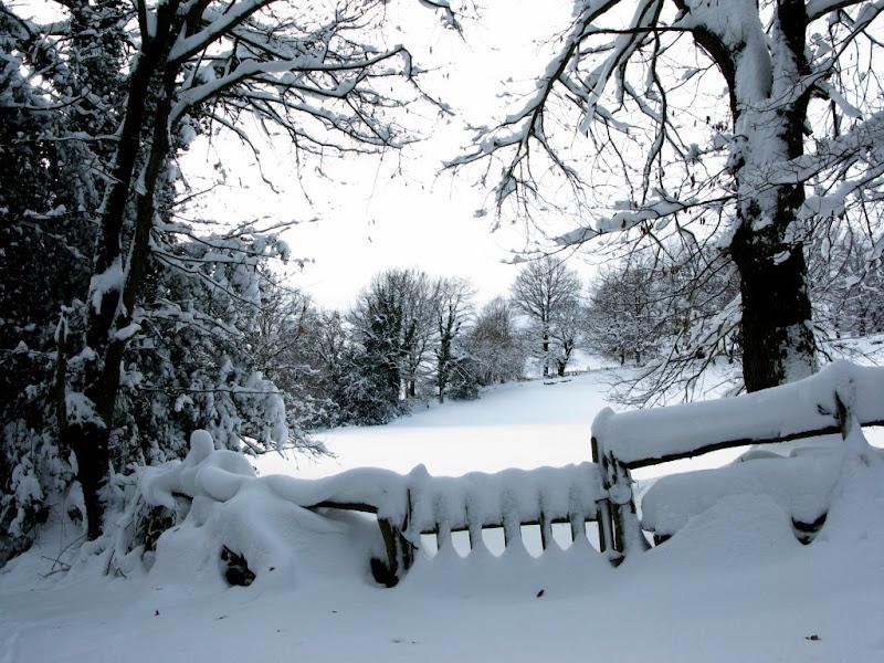 Los cierres se cubren de nieve.