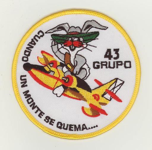 SpanishAF GRUPO 43 v9.JPG