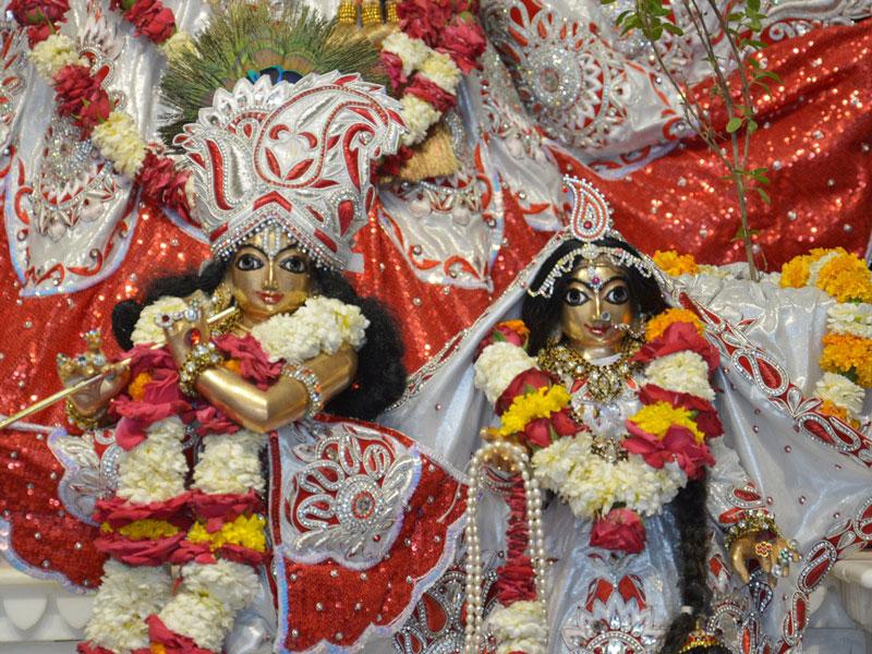 ISKCON Ahmedabad Deity Darshan 23 April 2016 (6)