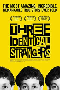 Baixar Três Estranhos Idênticos