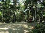 Subtropical Park