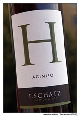f-schatz-Acinipo-2011