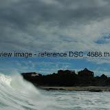DSC_4688.thumb.jpg