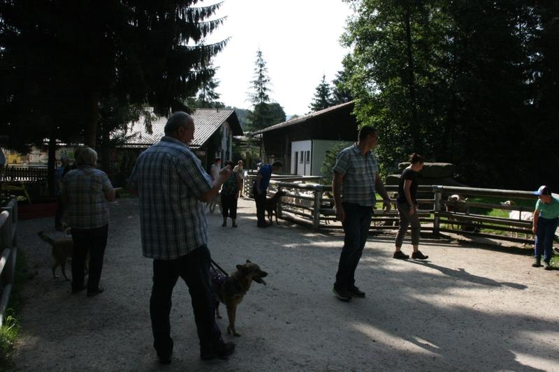 Ausflugsfahrt in den Bayerischen Wald: 19. Juli 2015 - IMG_1748.JPG