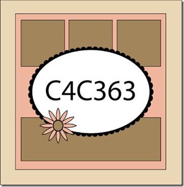 C4C363Sketch