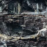 galapagos - Galapagos_FB_2-34.jpg