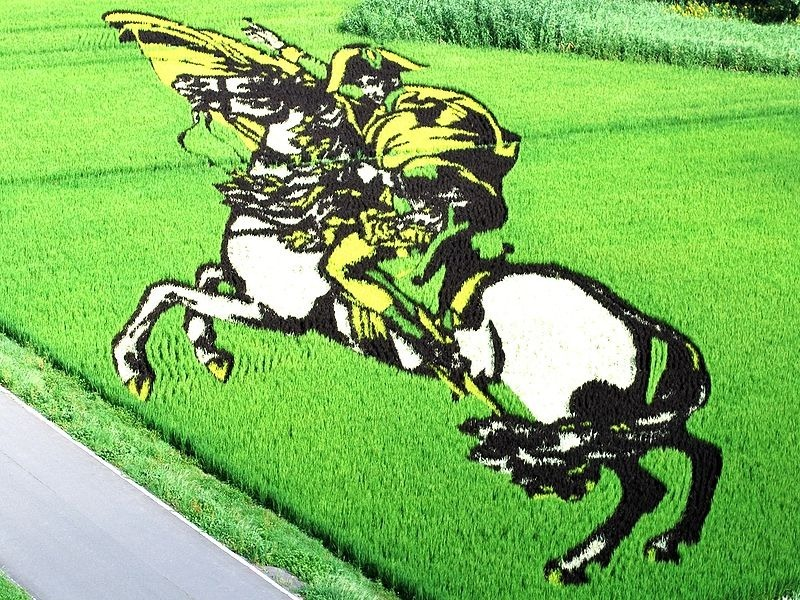 japanese-rice-paddy-art-5