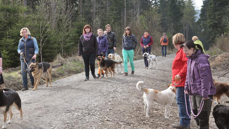 2014-04-13 - Waldführung am kleinen Waldstein (von Uwe Look) - DSC_0402.JPG