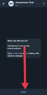 Homepage chat bot telegram