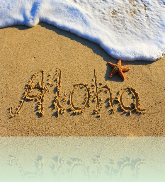 Aloha-Beach-Sand-And-Star-Fish-Picture