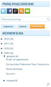 wyszukiwarka i archiwum bloga