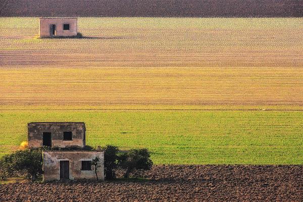 Tavoliere della Puglia di prometeo