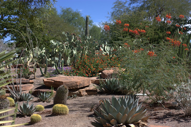 Ethel M Chocolate Factory and Botanical Cactus Gardens