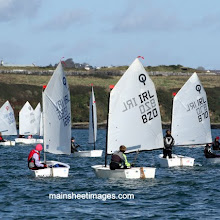 2011 OPTIMIST COBBLER LEAGUE mainsheetimages.com