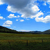 cannell_trail_IMG_1831.jpg