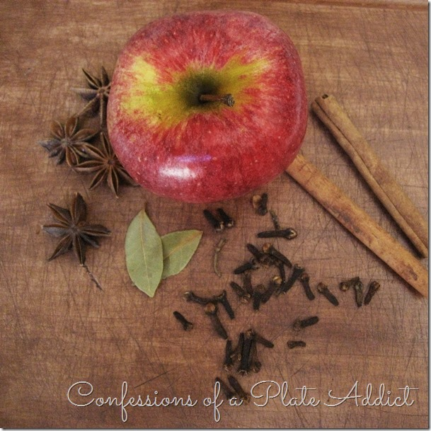 CONFESSIONS OF A PLATE ADDICT Spiced Apple Simmering Potpourri