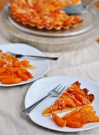 Aprikosen-Kokos-Tarte1