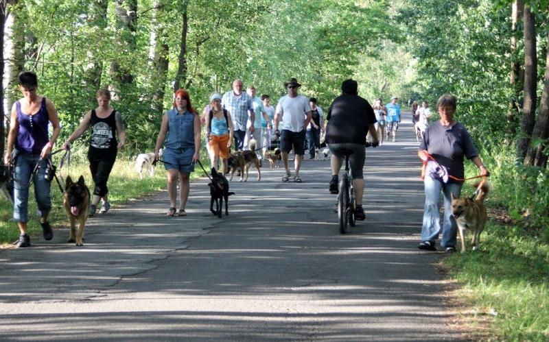 On Tour am Obersee bei Eschenbach: 21. Juli 2015 - Eschenbach%2B%25286%2529.jpg