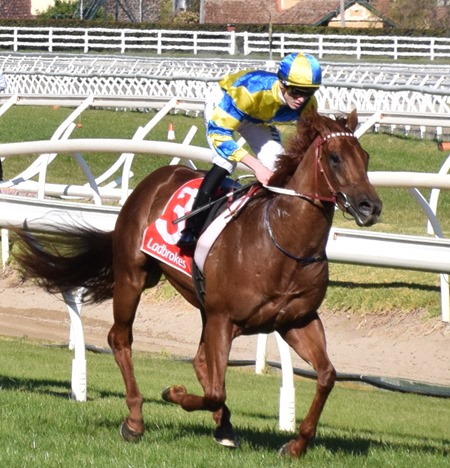 race 6_native soldier 2