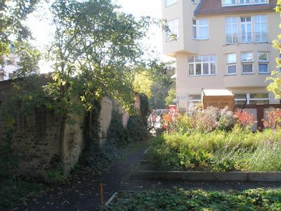 Licht- und Schattengarten