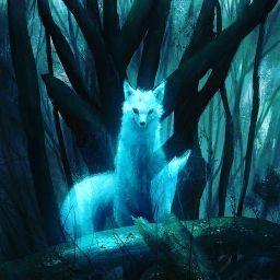AvinashPtSingh