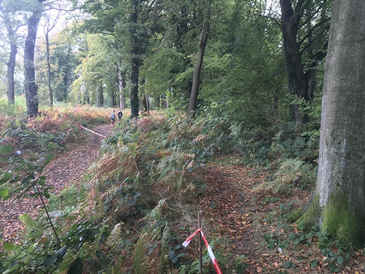 21/10/17 Lanaken Oefenveldloop - IMG_4991.JPG