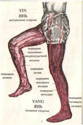 Меридианы на ногах