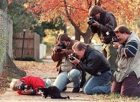 Funny Photographers, Awesome Cameraman clicking photos