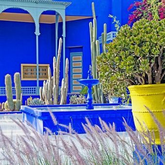 officialjardinmajorelle-1484610864133