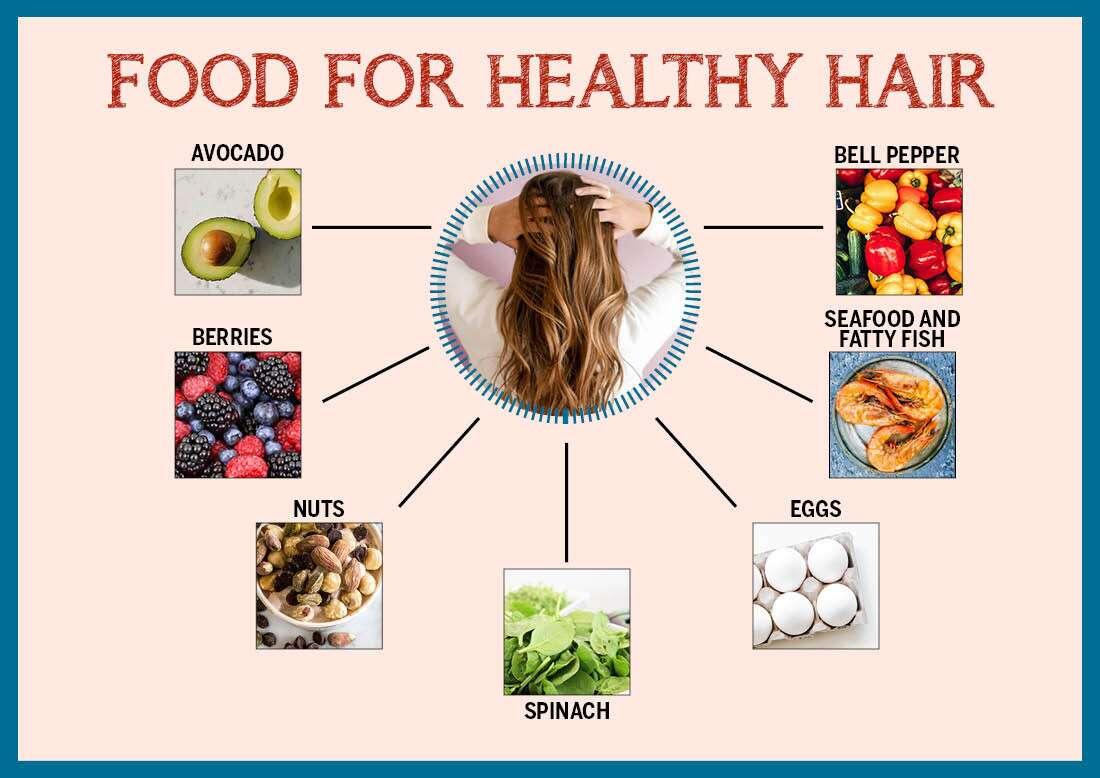 إنفوجرافيك الأطعمة لصحة الشعر