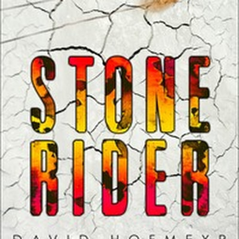 Two Thrilling YA Giveaways: STONE RIDER and DAMAGE DONE