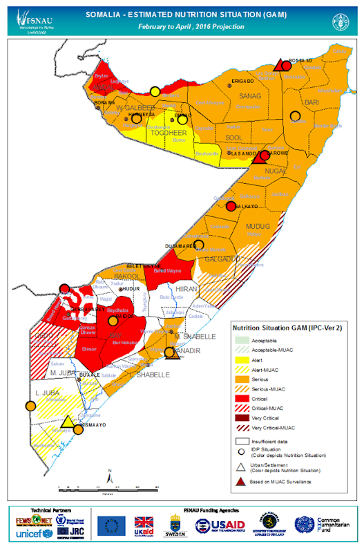 Estimated nutrition situation projection for Somalia, February - June, 2016. Graphic: FSNAU / FAO