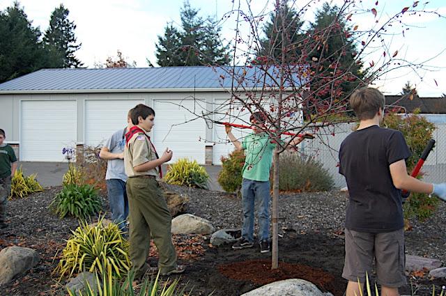 Tree Planting November 2010 - DSC_4555.JPG