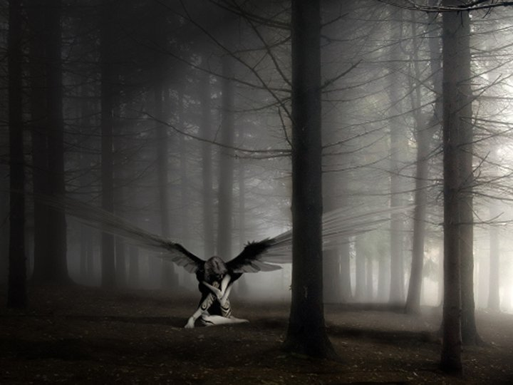 Dark Angel In The Fog, Angels 2