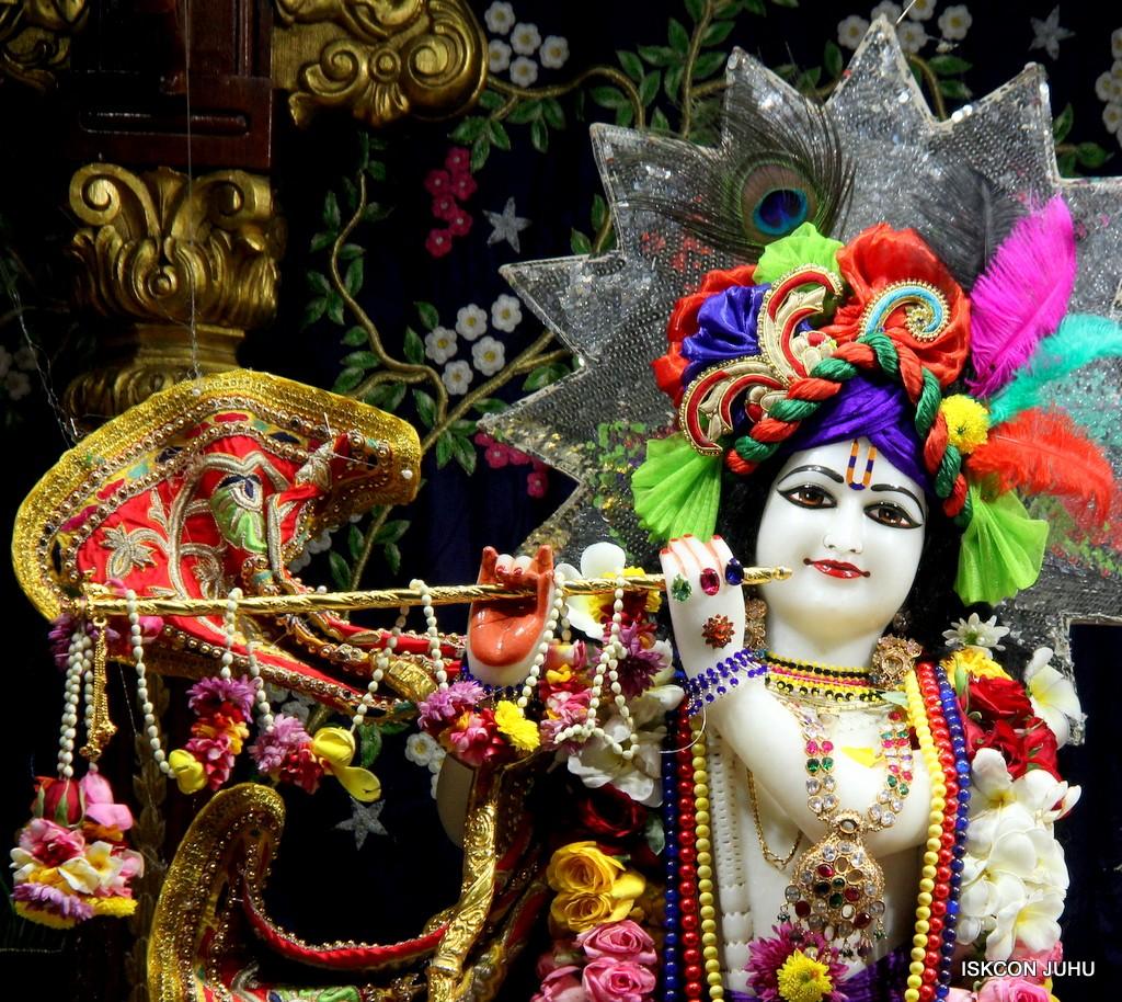 ISKCON Juhu Sringar Deity Darshan 22 Nov 2016 (5)
