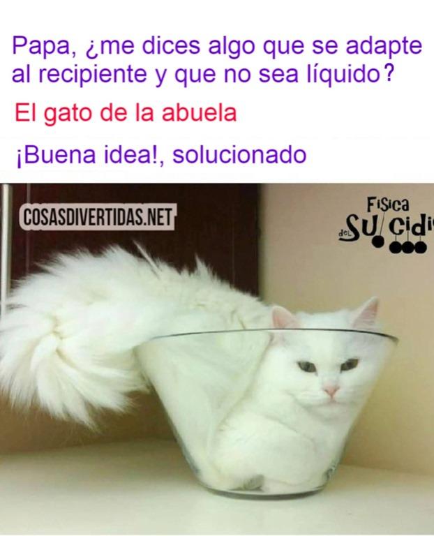 [el+gato+de+la+abuela+%5B3%5D]