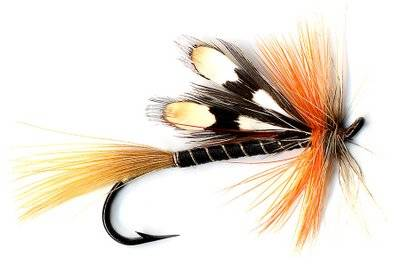Marla blair fly fishing guide services in massachusetts for Fly fishing massachusetts