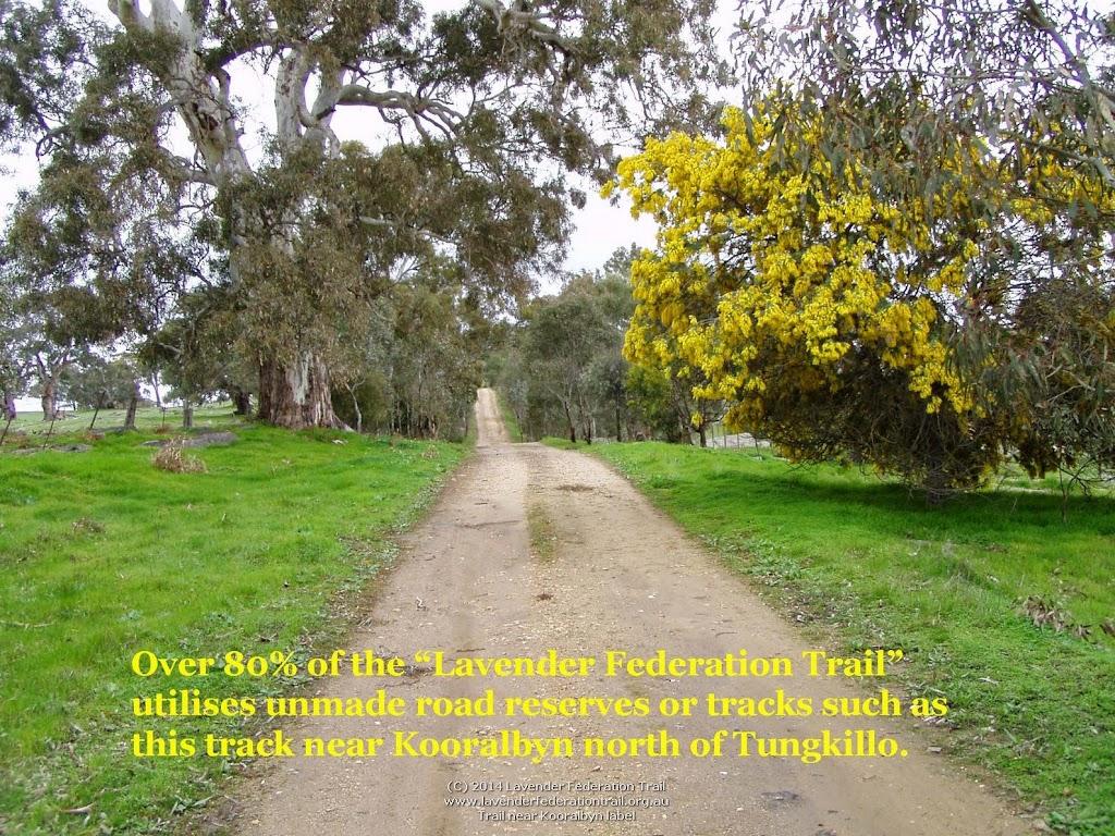 Trail near Kooralbyn label