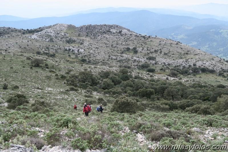 Sierra de los Pinos por las Pulgas