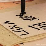 28.04.11 KOGEMUSTER ja muu melu - IMG_6185_filt.jpg