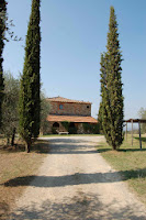 Carraretto_Castellina in Chianti_8