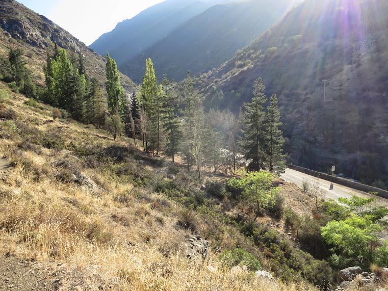 20150329 - CHILE - CERRO CANOITAS. IMG_0001