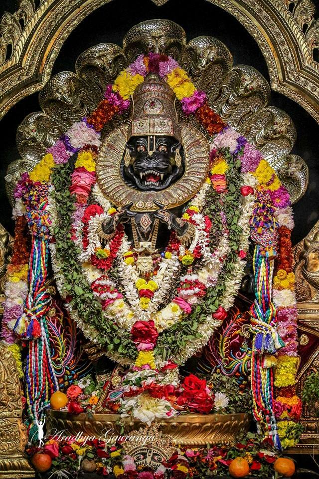 ISKCON Mayapur Deity Darshan 06 Jan 2015 (24)