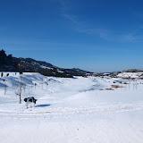 fotos nevada