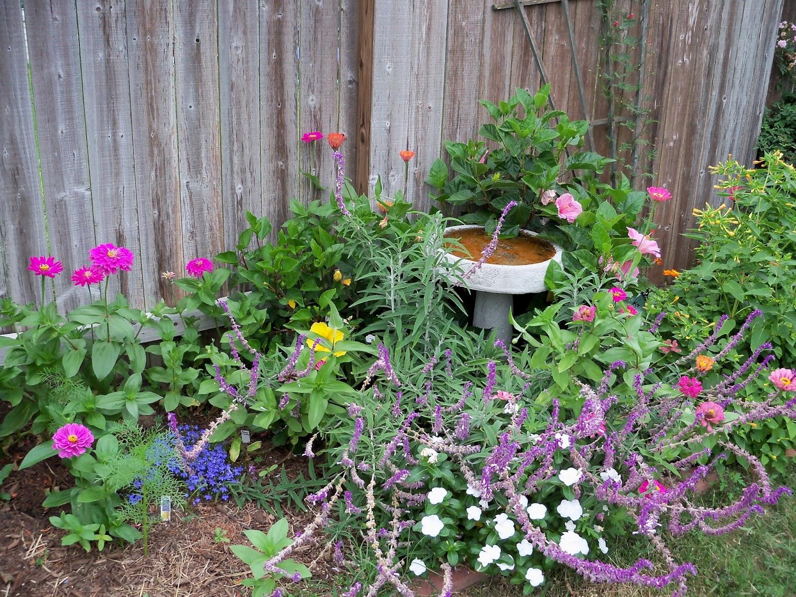 Gardening 2012 - 115_2109.JPG